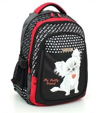 Школьный рюкзак PULSAR 8049-153