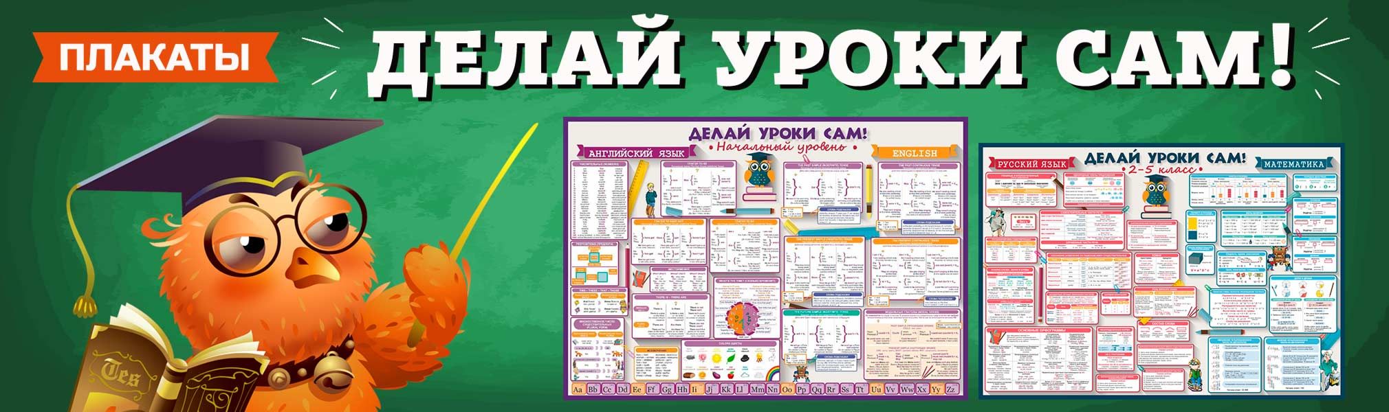 Плакаты и буклеты Делай Уроки САМ!