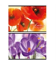 Альбом для рисования 24 л. Цветы schoolФормат