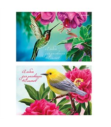 Альбом 40 л. Птицы на ветке schoolФормат