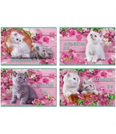 """Альбом для рисования 24л., А4, на гребне BG """"Котёнок на розовом фоне"""", эконом"""