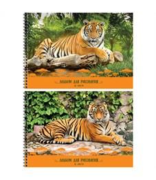 """Альбом для рисования 32л., А4, на гребне ArtSpace """"Природа. Тигры"""", фактурное тиснение"""