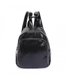 DS-9027 Рюкзак (/1 черный)