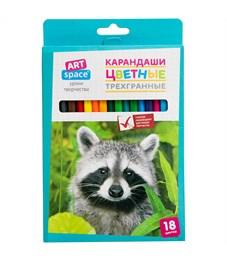"""Карандаши цветные ArtSpace """"Животный мир"""" 18цв., трехгран., заточен., картон. уп., европодвес"""