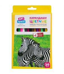 """Карандаши цветные ArtSpace """"Животный мир"""" 36цв., трехгран., заточен., картон. уп., европодвес"""