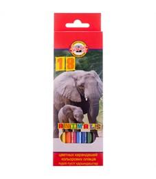 """Карандаши цветные Koh-I-Noor """"Животные"""", 18цв., заточен., картон, европодвес"""