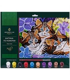 """Картина по номерам Greenwich Line """"Три кота"""" А3, с акриловыми красками, картон, европодвес"""