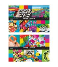 """Альбом для рисования 40л., А4, на скрепке ArtSpace """"Стиль. Nature and color"""""""