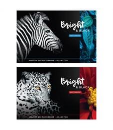 """Альбом для рисования 40л., А4, на скрепке ArtSpace """"Животные. Bright&black"""""""