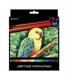 Цветные карандаши schoolФОРМАТ ДИКАЯ ПЛАНЕТА 24 цв. трехгранные