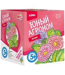 """Набор для выращивания растений Lori """"Юный агроном. Астра"""", от 5-ти лет"""