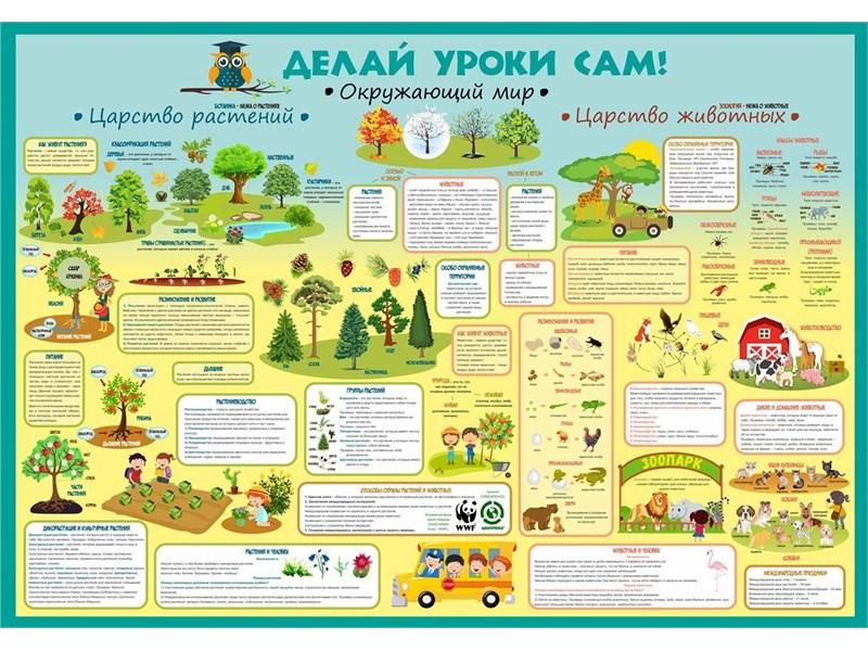 Плакат Расти и учись!: КАРТА МИРА