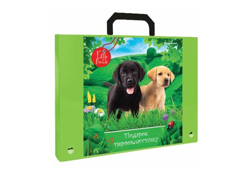 Портфель пластиковый А4, зеленый