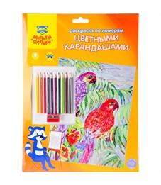 """Раскраска по номерам Мульти-Пульти """"Попугаи"""" А4, с цветными карандашами, картон, европодвес"""