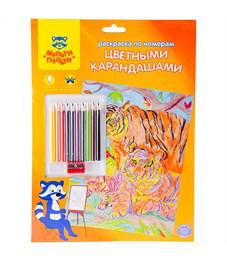 """Раскраска по номерам Мульти-Пульти """"Тигры"""" А4, с цветными карандашами, картон, европодвес"""