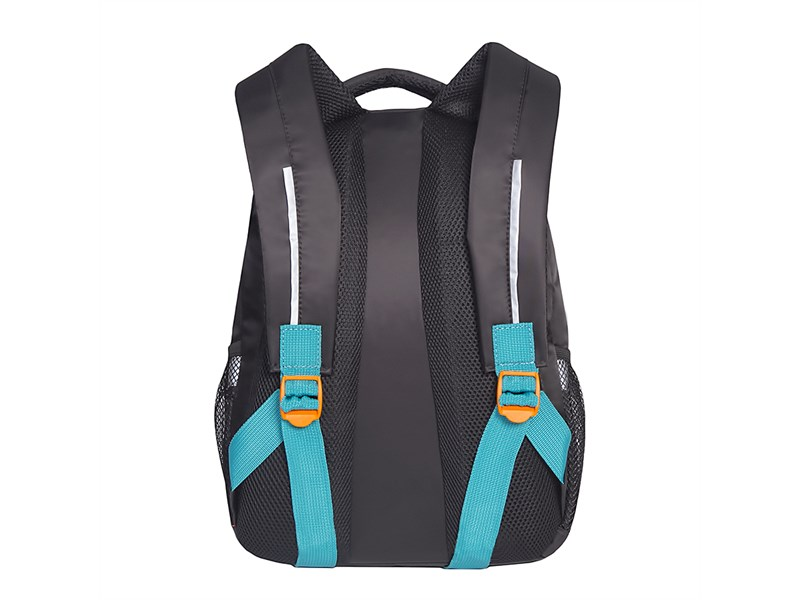 RG-762-1 Рюкзак школьный Grizzly черный