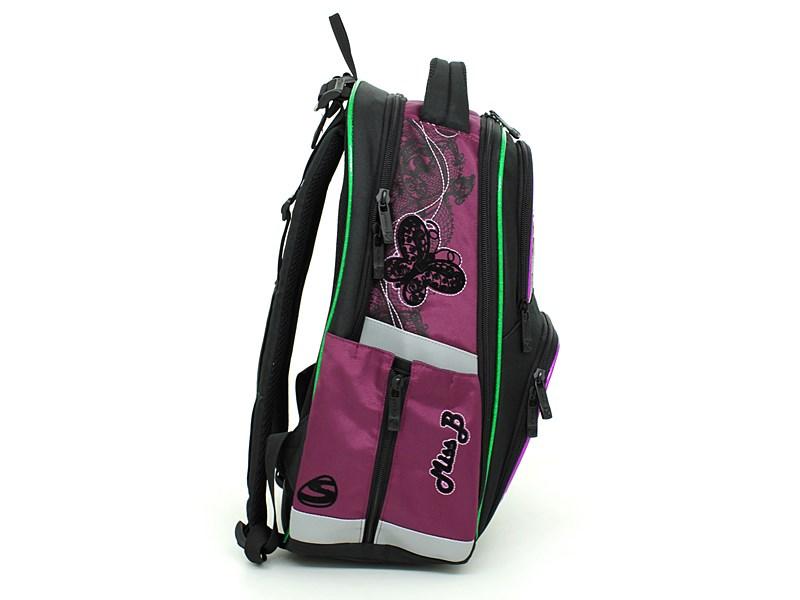 Школьный рюкзак Steiner GB4101-154