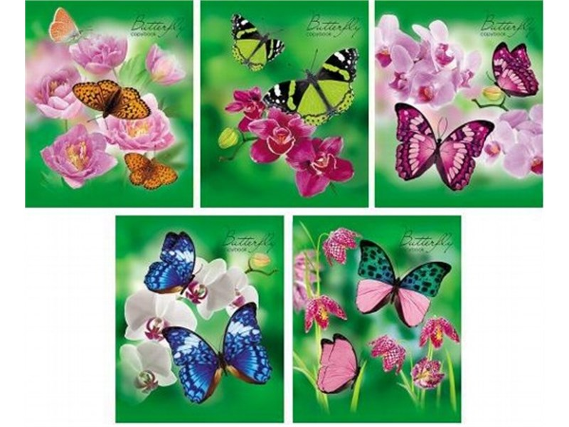Тетрадь школьная Hatber Бабочки с цветами 48 л. клетка А5 на скобе