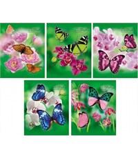 Фото 2. Тетрадь школьная Hatber Бабочки с цветами 48 л. клетка А5 на скобе