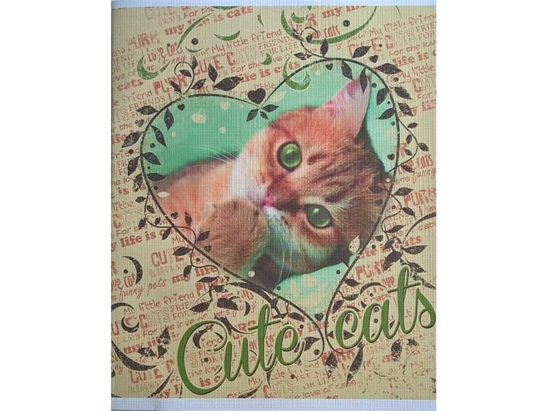 Тетрадь школьная Hatber Милые котята 48 л. клетка А5 на скобе