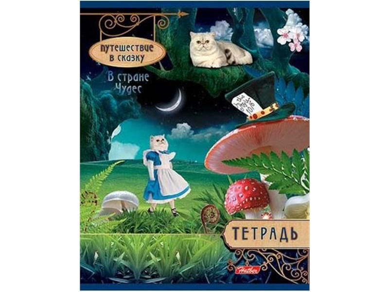 Тетрадь школьная Hatber Путешествие в сказку 24л., клетка