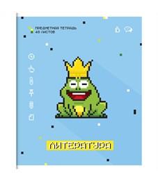 """Тетрадь предметная 48л. ArtSpace """"My game"""" - Литература, ВД-лак"""