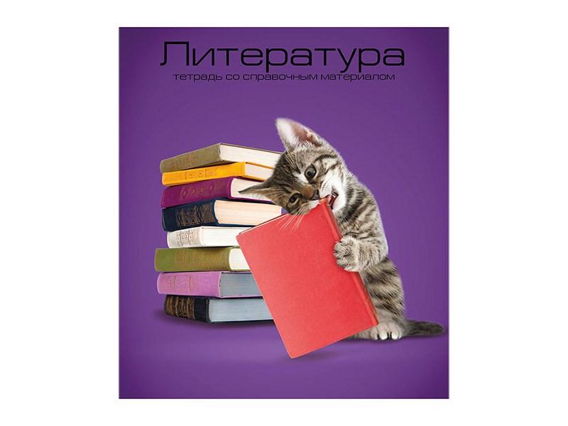 Тетрадь schoolФОРМАТ Учёные коты Литертура 40 л.