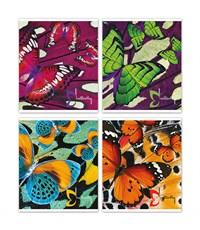 Тетрадь школьная SchoolФОРМАТ Бабочки, 48 листов, клетка, А5
